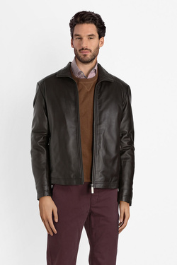 Blouson CAMBRIDGE LEGEND 52CG1CP200 Marron foncé