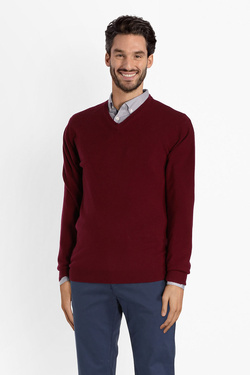 Pull CAMBRIDGE LEGEND 46CG1PU000 Violet prune